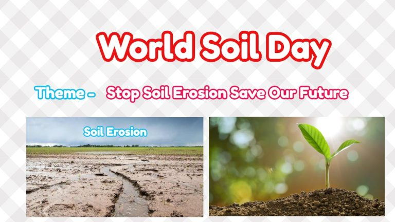 World Soil Day 2019 | Stop Soil Erosion Save Our Future |