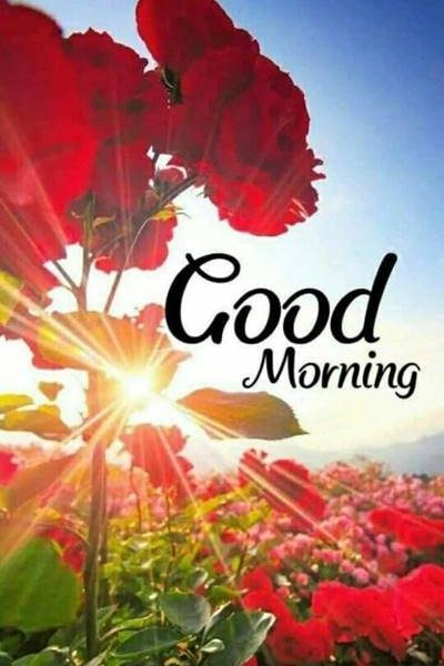 good morning images love download