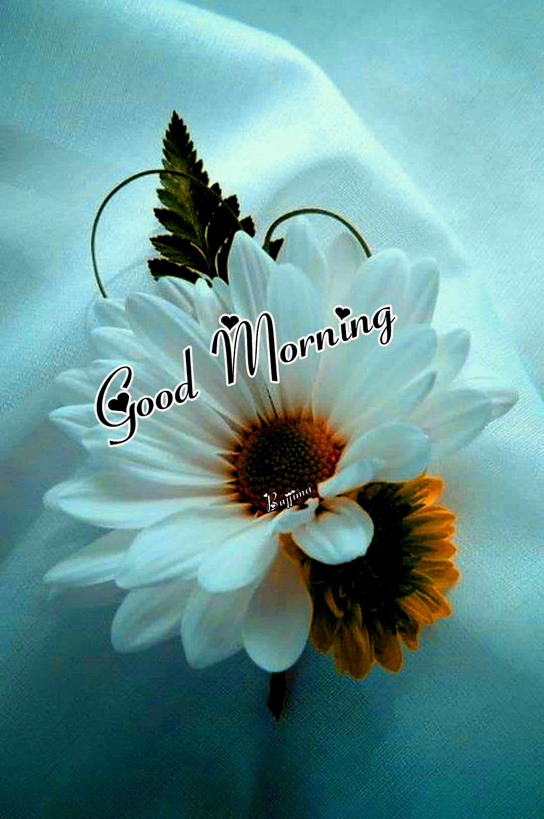 good morning images app